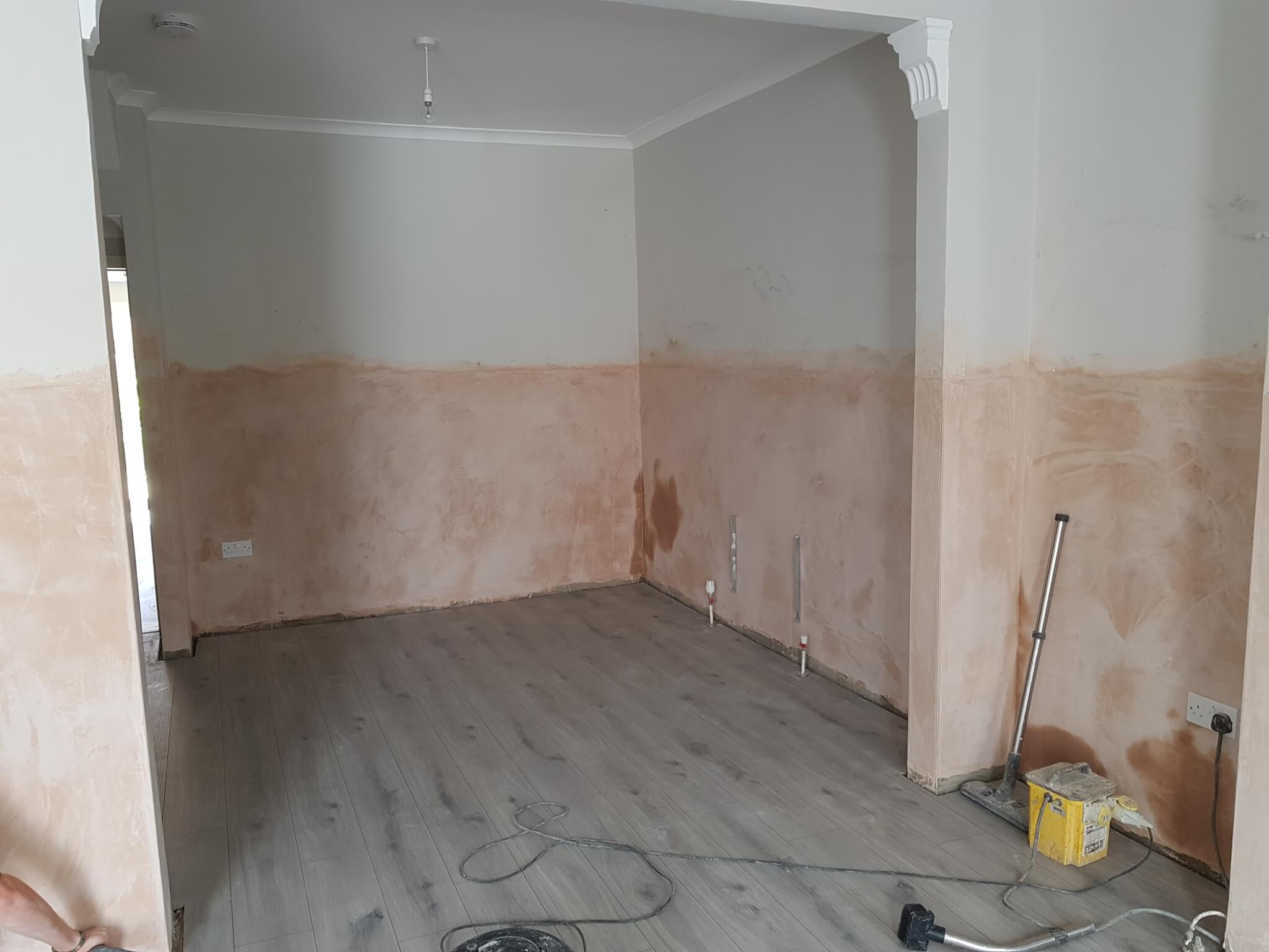 Chemical DPC and specialist plastering works