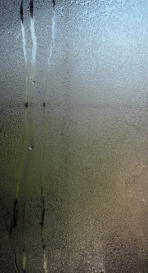 Condensation can be most visible on windows
