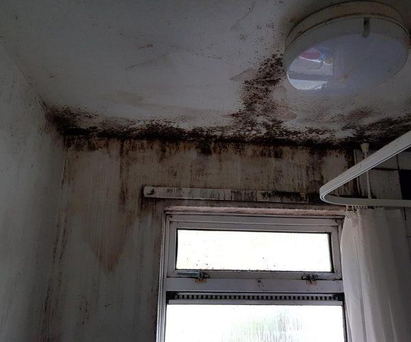 Condensation in bathroom